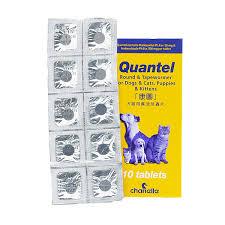 Quantel 康圖 貓狗寵物用杜蟲藥 1盒 (10粒)