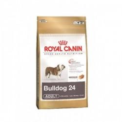 Royal Canin (法國皇家) 成犬乾糧 – 英國鬥牛犬12kg