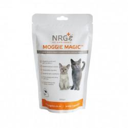 NRG+ MOGGIE MAGICTM (貓貓營養粉) 250gm x2包優惠