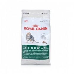 Royal Canin (法國皇家) 高齡貓乾糧 – 免疫老貓配方2kg