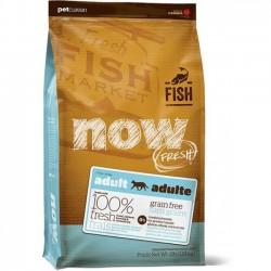 Now!成貓配方無殼物系列(鱒魚+三文魚+希靈魚)8磅