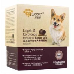 Cosset 愛寵健 靈芝蟲草老年犬專用配方30粒 到期日: 30/9/2021