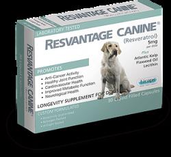 RESVANTAGE 維蘆醇 – 白藜蘆醇 (狗) 30粒 到期日: Apr/2021